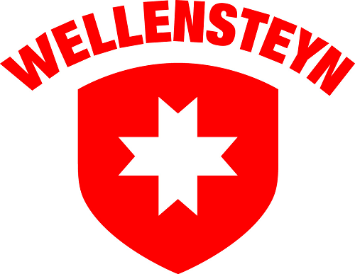 Логотип Wellensteyn